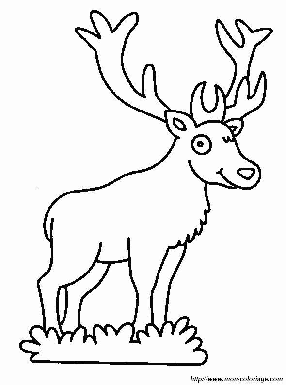 Ausmalbilder Verschiedene Tiere Bild Hirsch 4