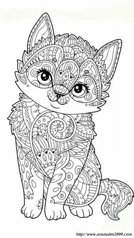 Ausmalbilder Für Erwachsene Bild Dies Ist Eine Freundliche Kleine Katze