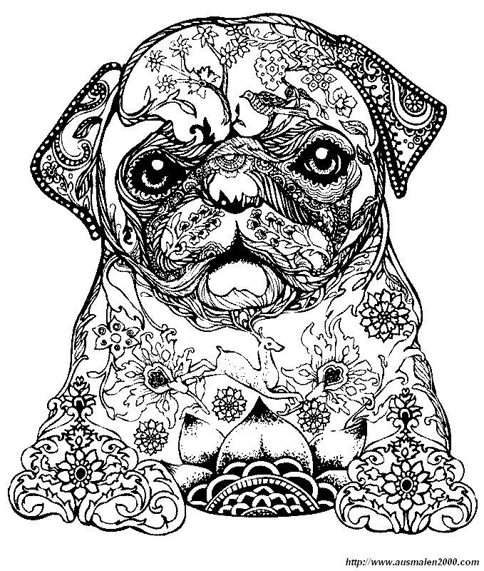 Ausmalbilder Für Erwachsene, bild Ein kleiner Hund