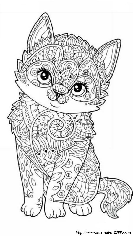 ausmalbilder für erwachsene bild eine sehr freundliche katze