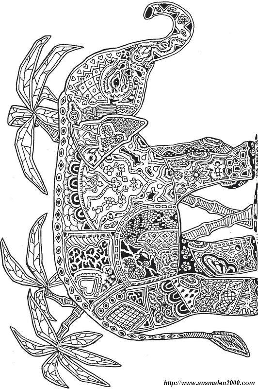 Ausmalbilder Für Erwachsene Bild Elefant Mit Palmen Ausmalbilder