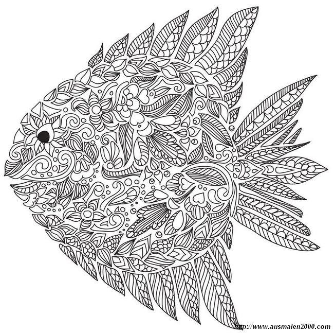 Ausmalbilder Für Erwachsene Bild Fisch Mit Vielen Details
