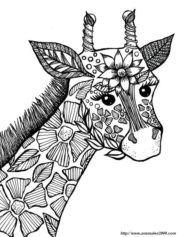 ausmalbilder f r erwachsene bild giraffe zum ausmalen. Black Bedroom Furniture Sets. Home Design Ideas
