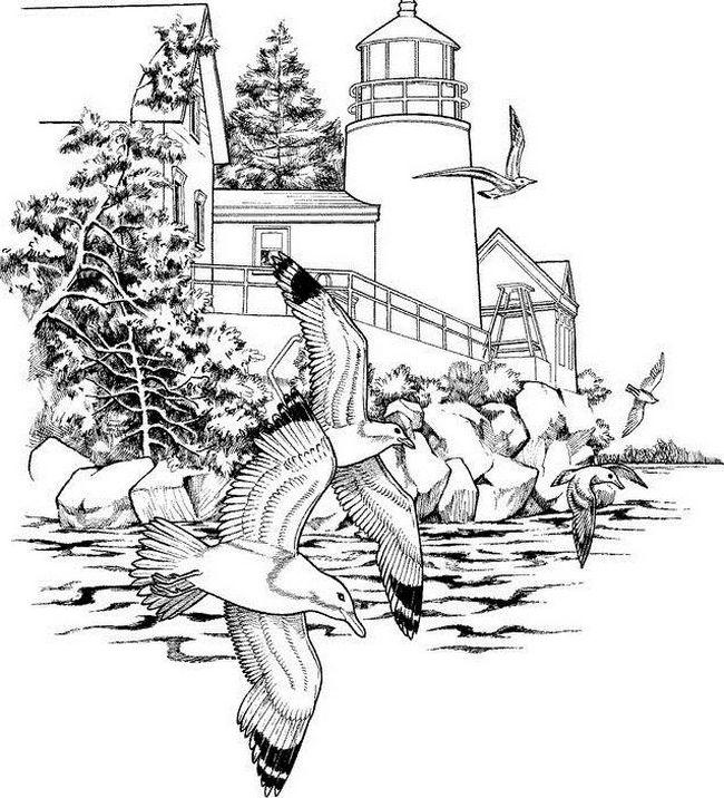 Ausmalbilder Für Erwachsene Bild Leuchtturm Am Meer
