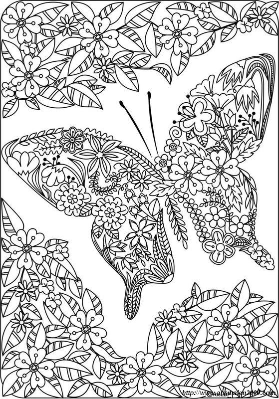 Ausmalbilder Fur Erwachsene Bild Schmetterling Und Sehr