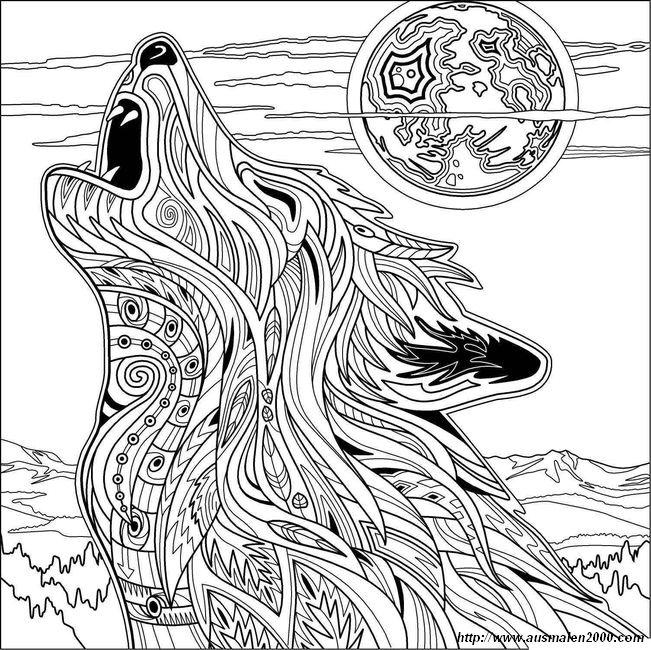 Ausmalbilder Für Erwachsene Bild Wolf Im Mondschein