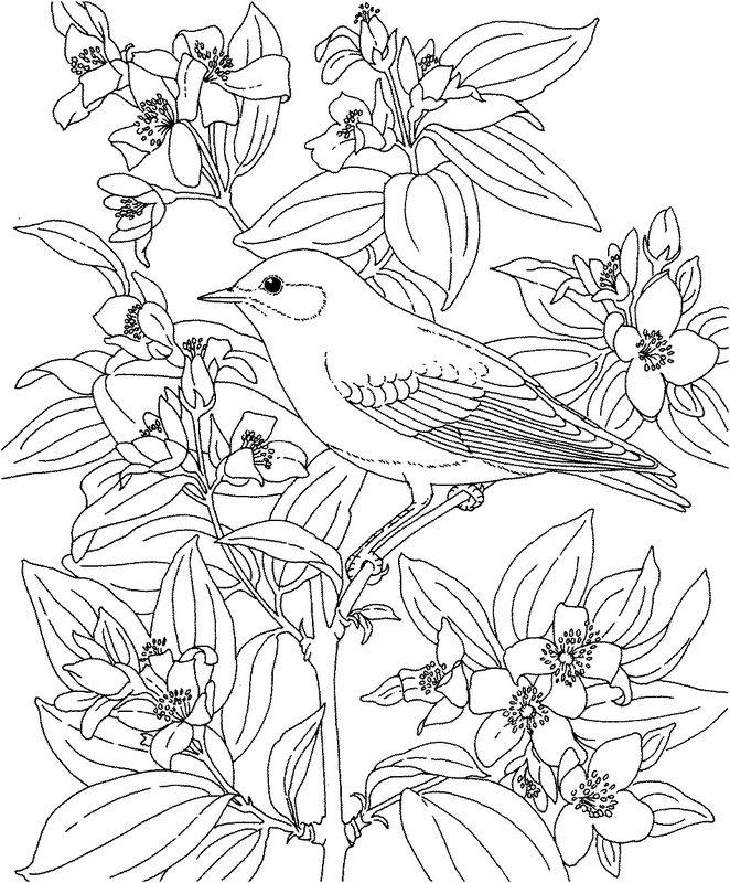 Ausmalbilder Blumen Bild Blumen Und Ein Vogel