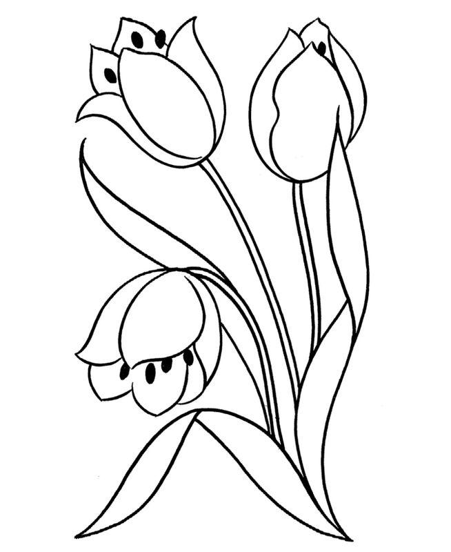 Ausmalbilder Blumen Bild Drei Tulpen Zum Ausmalen