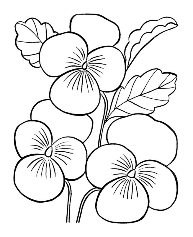 Ausmalbilder Blumen Bild Kleeblatt Ausmalbilder