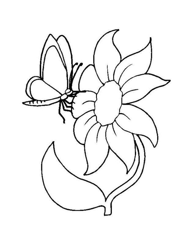 Ausmalbilder Blumen, bild Schmetterling auf eine grosse Blume