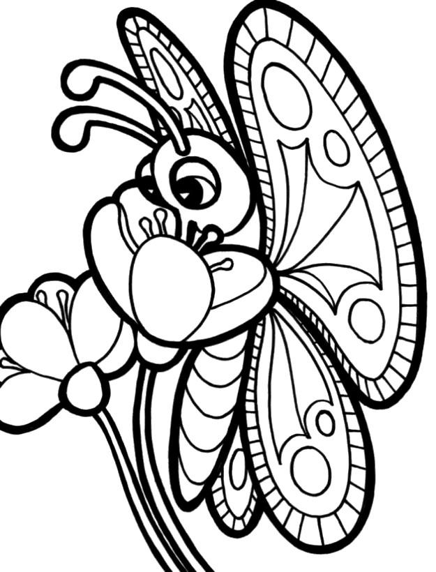 Ausmalbilder Blumen Bild Schmetterling Auf Einer Blume