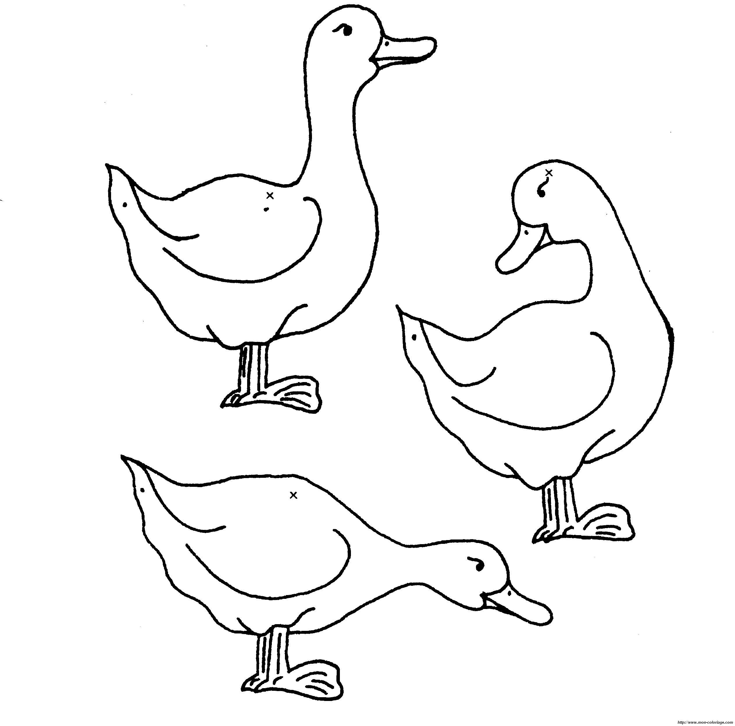 Ziemlich Malvorlage Ente Ideen - Malvorlagen Von Tieren - ngadi.info