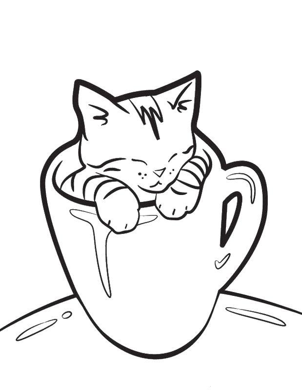 Ausmalbilder Katze bild In eine