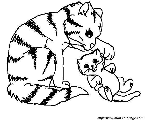 Ausmalbilder Katze Bild Katze 017