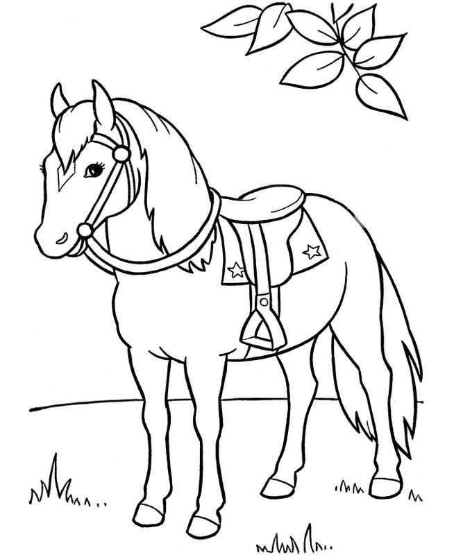 ausmalbilder pferde bild ein sattel mit sternen