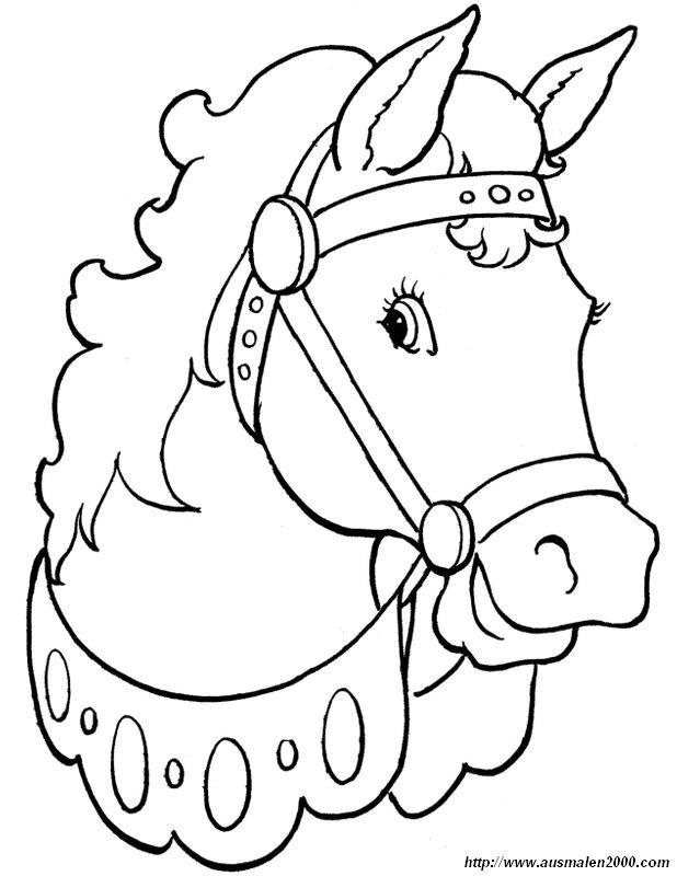 Ausmalbilder Pferde Bild Ein Freundliches Zirkuspferd
