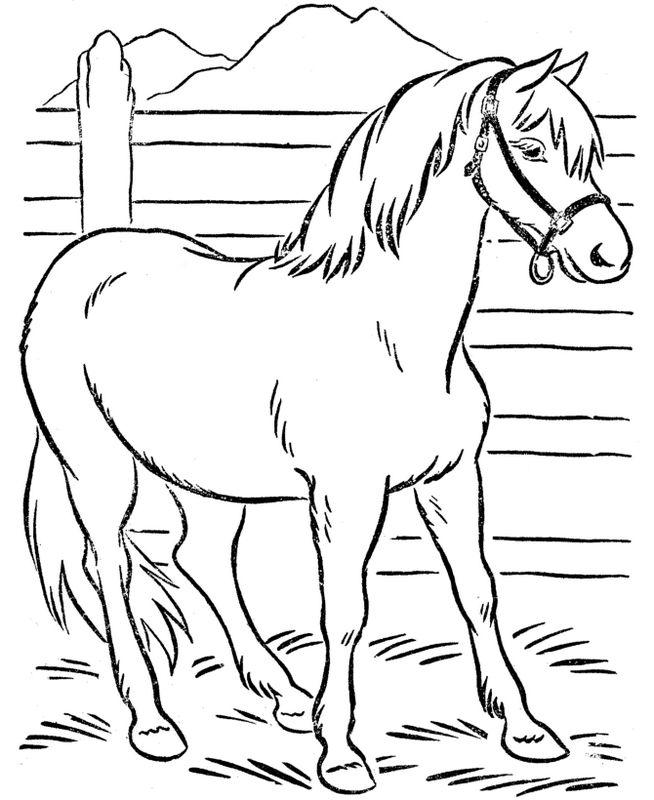 Ausmalbilder Pferde, bild In den Bergen