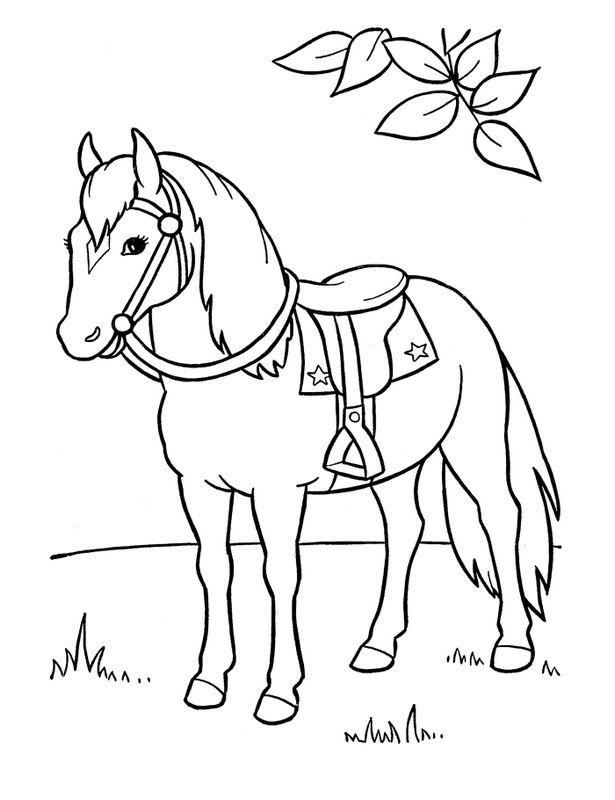 ausmalbilder pferde, bild pferd mit sattel