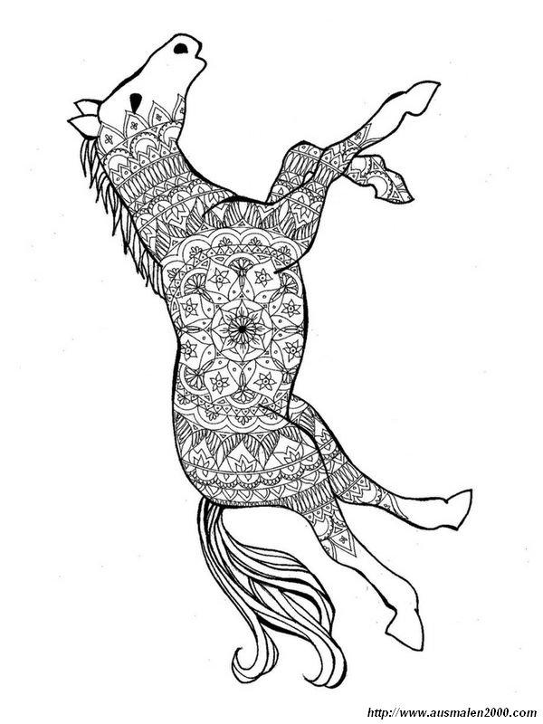 Ausmalbilder Pferde, bild Weisst du was ein Mandala ist