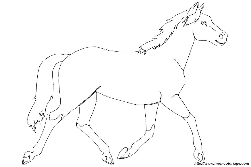 Ausmalbilder Pferde Bild Pferd 001