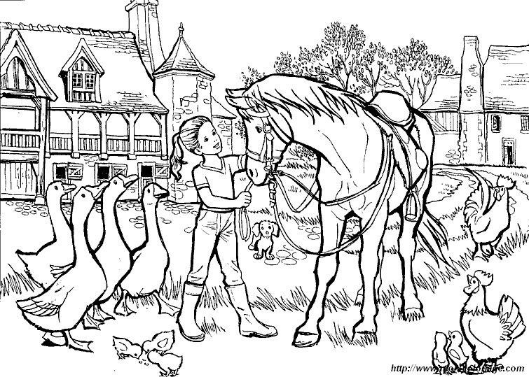 ausmalbilder pferde bild pferd 015