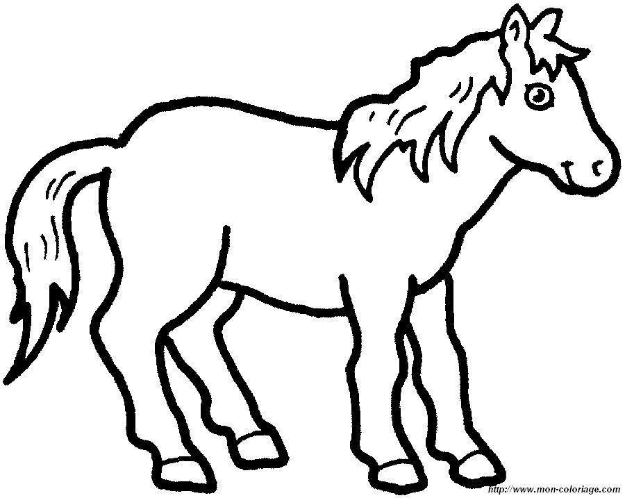 Ausmalbilder Pferde Bild Pferd Ausdrucken