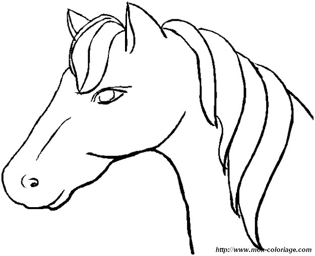 ausmalen pferd