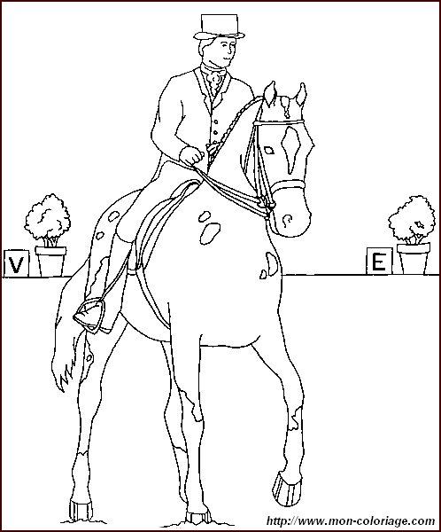 Ausmalbilder pferde bild pferde 010 for Disegni di cavalli da stampare e colorare