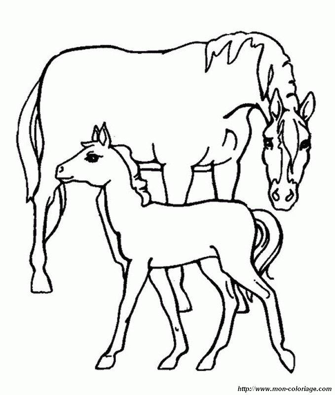ausmalbilder pferde bild stute und ihr fohlen