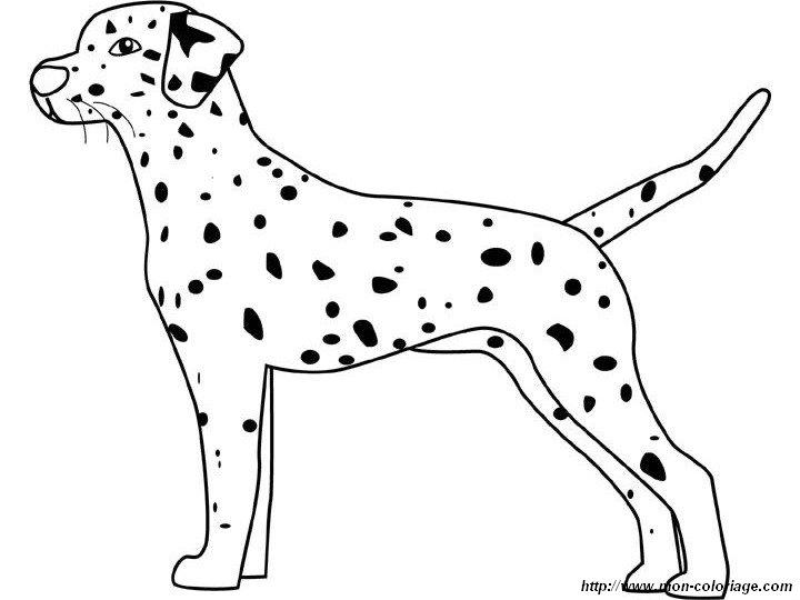 Ausmalbilder Hunde Dalmatiner ~ Die Beste Idee Zum Ausmalen von Seiten