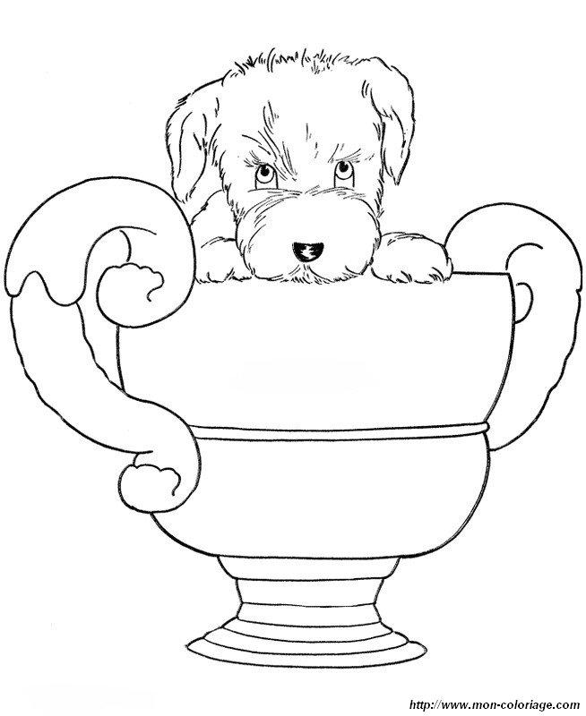 Dog Breed Book Online