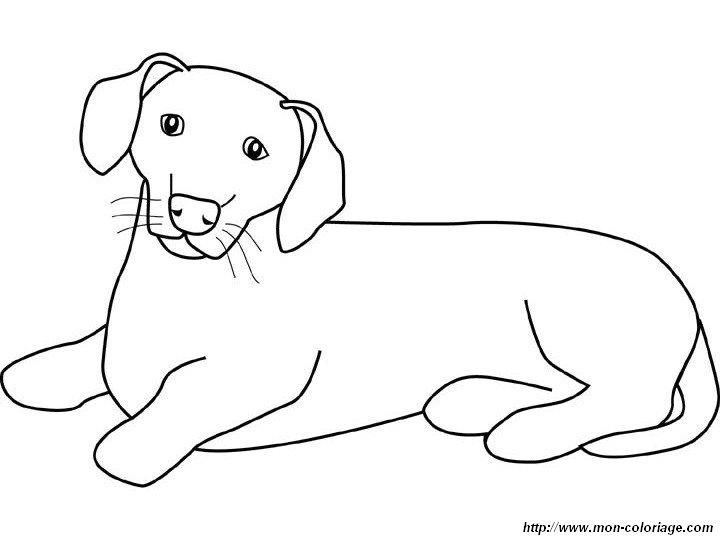 Ausmalbilder Hund Bild Der Dackel