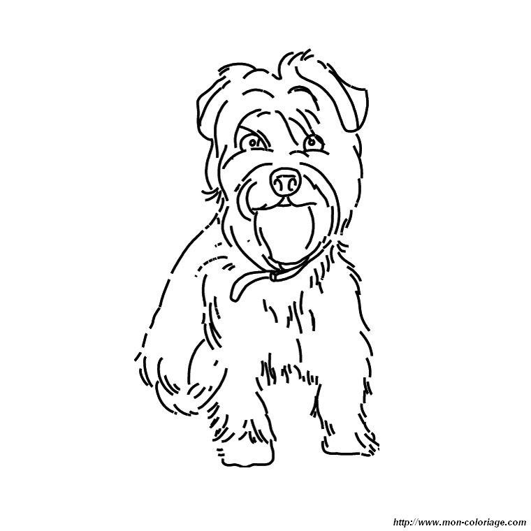 Fein Yorkshire Terrier Malvorlagen Bilder - Framing Malvorlagen ...