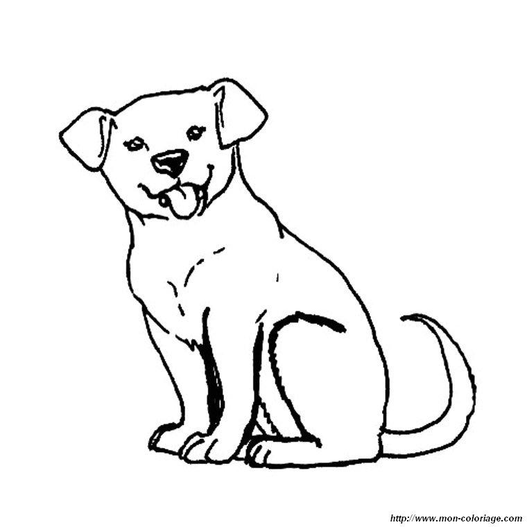 ausmalbilder hund bild labrador welpe