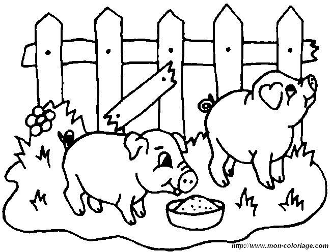 Ausmalbilder Schwein Bild Schwein 36