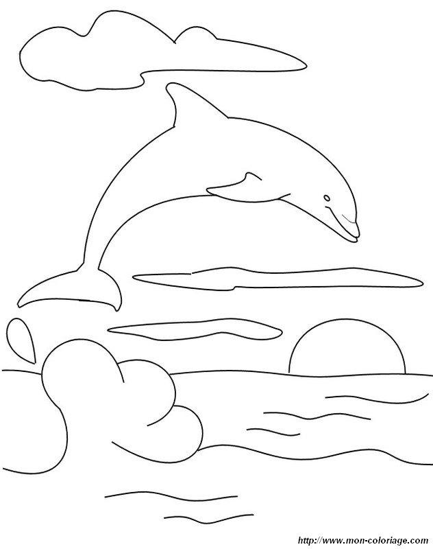 delphin zum ausmalen