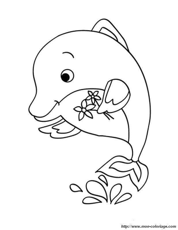 ausmalbilder delfin bild delphin mit blumen