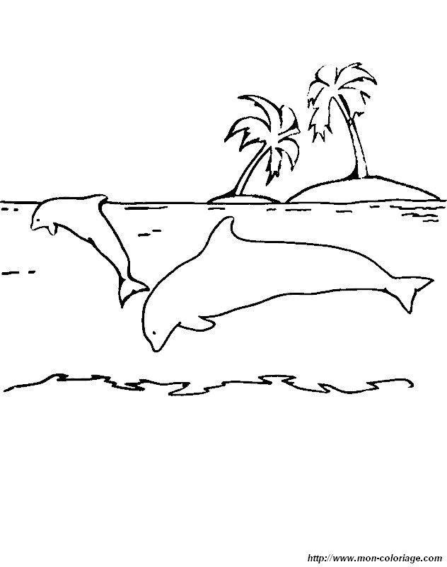 Ausmalbilder Delfin Bild Einsame Insel
