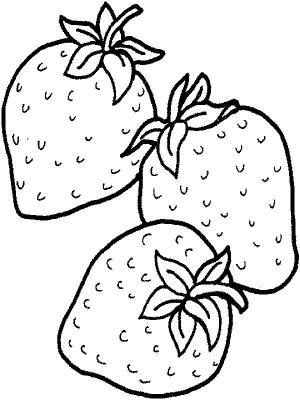 Ausmalbilder Frucht Oder Obst Bild Erdbeeren Aus Dem Garten