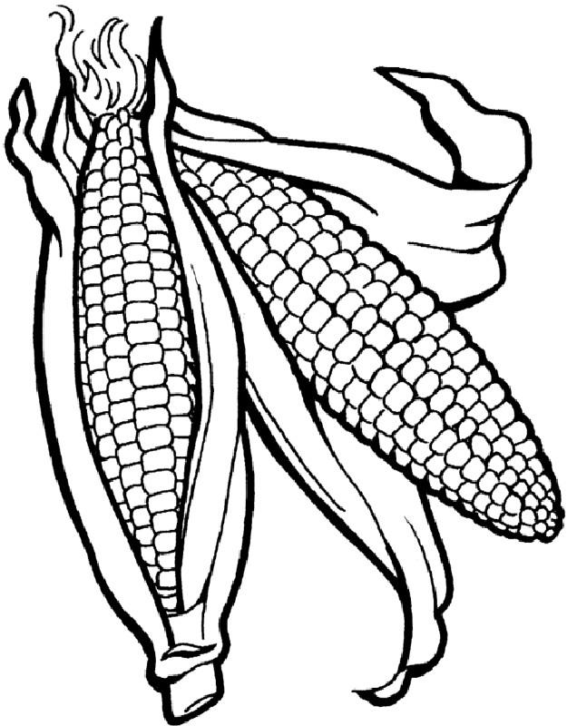 Ausmalbilder Frucht oder Obst, bild Maiskolben