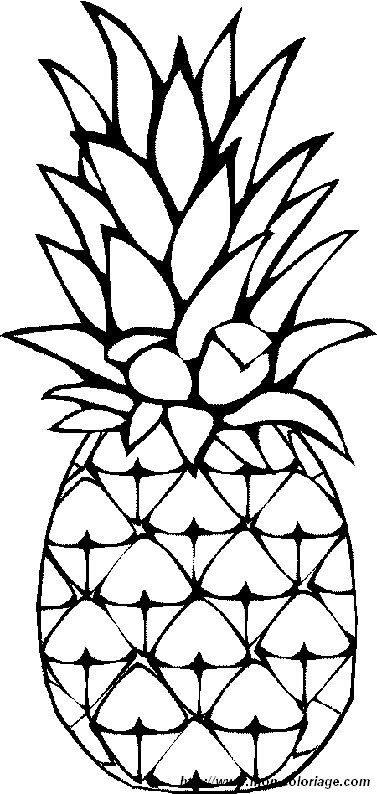 Img on Fruits Coloring Page