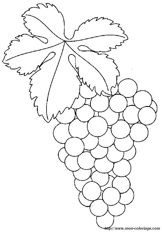ausmalbilder frucht oder obst bild trauben