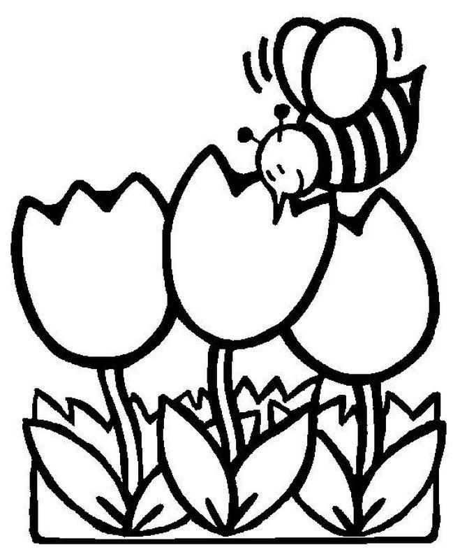 ausmalbilder frühling bild eine biene und tulpen
