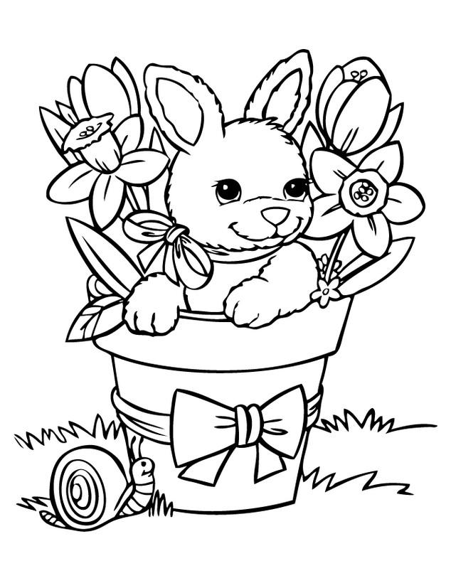 ausmalbilder kaninchen bild osterhase