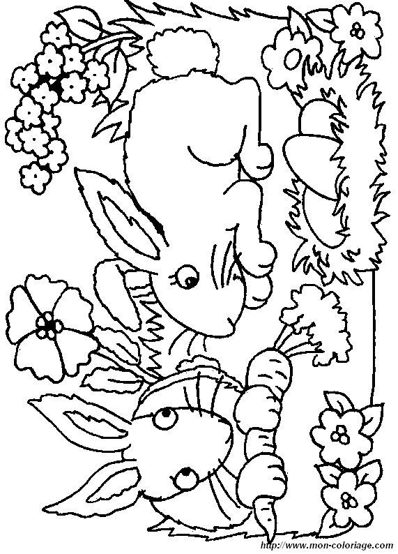 ausmalbilder kaninchen bild kaninchen 0027