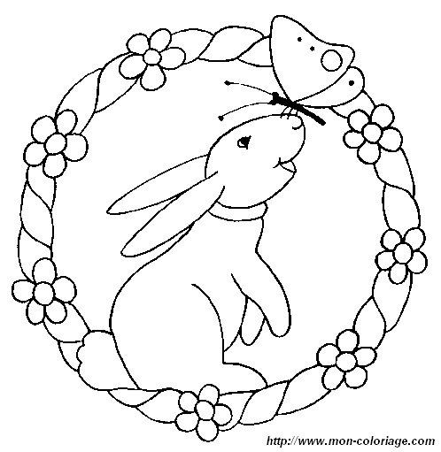 ausmalbilder kaninchen bild kaninchen 003