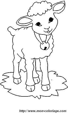 Ausmalbilder Schaf, bild schafe 0010