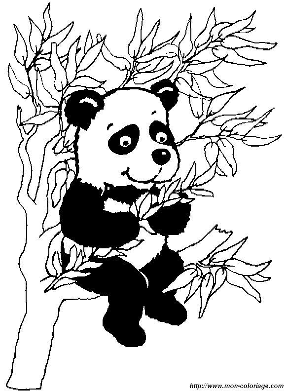 Kleurplaten Paw Patrol Printen Ausmalbilder Panda Bild Panda1