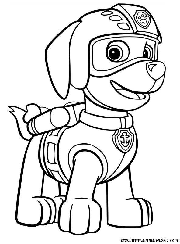 ausmalbilder paw patrol bild zuma der labrador
