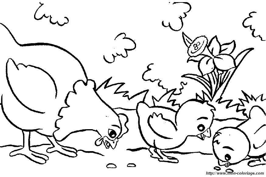 ausmalbilder hühner bild eine henne 13